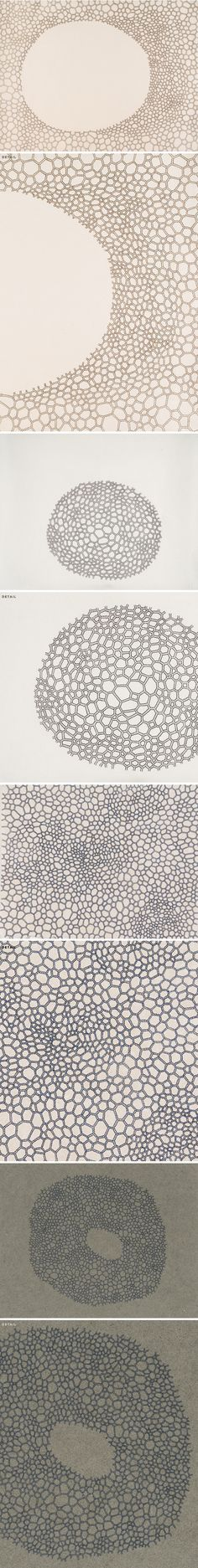 ink drawings on hand made paper by jeanne heifetz