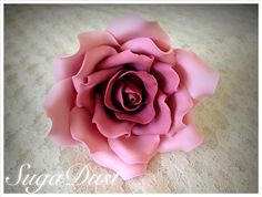 Deep Pink Sugar Rose