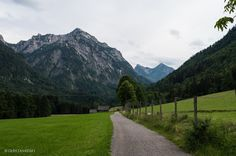 Deer Farm, Mountain Goats, Nature Photos, Places To See, Restaurant, Play, Mountains, Dinner, Street