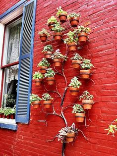 Pretty cool idea : tree wall planter great idea for an herb garden possibly....