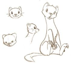 Since the comic book scene I'm working on in school is the one when Draco is turned into a ferret, I had to develop a style for him. ~~=oP Draco the Ferret sketches Animal Sketches, Animal Drawings, Drawing Sketches, Drawing Tips, Cartoon Drawings, Easy Drawings, Otter Cartoon, Cute Ferrets, Character Design References