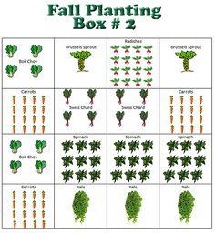 Fall Planting - Box 2 Square Foot Gardening Backyard Homestead
