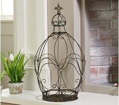 Indoor/Outdoor Oval-Shaped Wire Topiary by Valerie