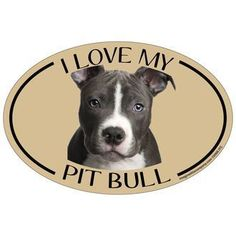 I Love My Pit Bull Colorful Oval Magnet #PitBull