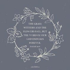 """""""The grass withers and the flowers fall, but the word of our God endures forever. - Isaiah 40:8 #truth #dailybread #HeismyRock #eternal #perfect #scripture…"""""""