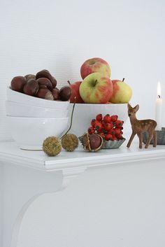 Herbst in unserer Küche   Flickr - Photo Sharing!