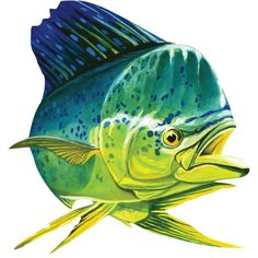 Mahi Mahi Fish Wall Decal http://www.retroplanet.com/PROD/46677