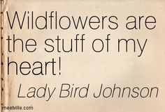 Billede fra http://meetville.com/images/quotes/Quotation-Lady-Bird-Johnson-heart-Meetville-Quotes-253580.jpg.