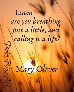 Mary Oliver Quote: Listen, are you breathing just a little, and calling it a lif… – My CMS Mary Oliver Quotes, Wall Art Quotes, Quote Wall, Courage Quotes, American Poets, Empowerment Quotes, Just A Little, People Quotes, Positive Attitude