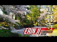 Erin Ji Temple - Burial Place of Takeda Shingen, 恵林寺, kofu city, Yamanashi-ken, Japan Google Map: https://www.google.co.jp/maps/place/%E6%81%B5%E6%9E%97%E5%AF%BA/@35.729982,138.713819,17z/data=!3m1!4b1!4m2!3m1!1s0x0:0xecb230f05ea1a567