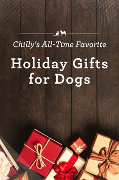 Holiday shopping can stressful. But shopping for our four-legged family doesn't have to be difficult. Chilly has shared with us some of his all-time favorite holiday gift ideas that your pooch will love! Christmas Gifts For Pet Lovers, Dog Lover Gifts, Dog Gifts, Holiday Gifts, Smart Dog Toys, Diy Dog Toys, Best Dog Toys For Chewers, Outdoor Dog Toys, Kong Dog Toys