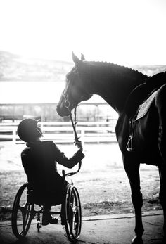 Equine olympics! Such a sweet picture !