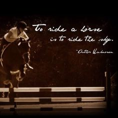 To ride a horse is to ride the sky...this is why I'm a hunter/jumper, I feel like I'm soaring.