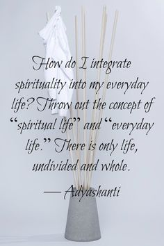 """""""How do I integrate spirituality into my everyday life? Throw out the concept of 'spiritual life' and 'everyday life'. There is only life, undivided andd whole. Spiritual Wisdom, Spiritual Growth, Spiritual Awakening, Wisdom Quotes, Life Quotes, Little Buddha, A Course In Miracles, Spiritus, Spiritual Teachers"""