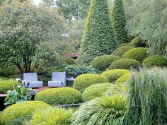 Chelsea: an Irish garden of clipped evergreens