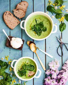 Nestíháte, nevíte, co vařit a potřebujete poradit? Dáme vám inspiraci na zdravé rychlé obědy, po kterých nepřiberete a zvládne je každý. Palak Paneer, Healthy Recipes, Healthy Food, Food And Drink, Ethnic Recipes, Diet, Healthy Foods, Healthy Food Recipes, Healthy Eating Recipes