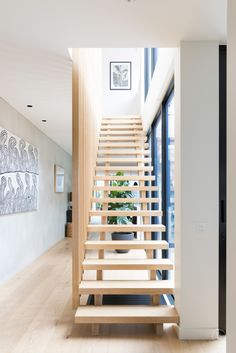 Open timber creates open space
