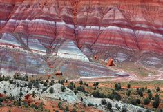 The Stunning Colors Of Paria River Canyon In Utah Paria valley badlands, utah The Paria Mountains ' 18 miles from Kanab, Utah in Hwy Paria Wilderness, Utah, USA. These mountains. Bryce Canyon, Grand Canyon, Paria Canyon, Canyon River, Route 66, Places To Travel, Places To See, Mississippi, Kanab Utah