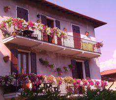Azalea & Glicine House