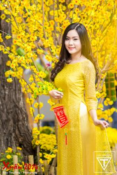 Vietnamese long dress Vietnamese Clothing, Vietnamese Dress, Vietnamese Traditional Dress, Traditional Dresses, Beautiful Asian Girls, Beautiful Women, Oriental Fashion, Female Poses, Ao Dai