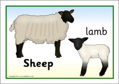 Farm animals and their young posters (SB7666) - SparkleBox ...