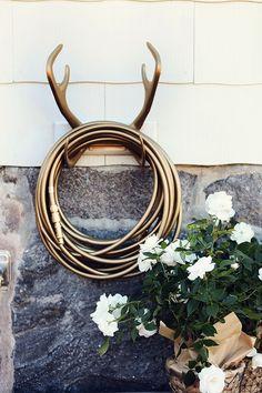 Gold garden hose and antler holder...Oh My