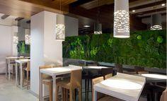 Zielone ściany - nowy wymiar dekoracji