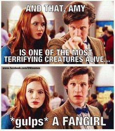 I think they should have an episode where the doctor and his companion are stuck on a planet full of doctor fans. Like, fan girls keep the doctor stuck inside the tardis all the time. Lol<---THIS. Even though I don't think I'm that scary. Doctor Who, 12th Doctor, Doctor Stuff, Fangirl Problems, Fandoms, Don't Blink, Torchwood, Teenager, Dr Who