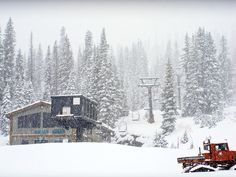Wolf Creek Ski Area | Family-Owned Ski Resort | Where to Ski in Colorado | SKI Magazine