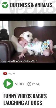 Funny Videos Babies Laughing at Dogs | #newyearsresolutionin5words #musiccitybowl | http://veeds.com/i/NJrAsujDBIQggSLt/cuteness/