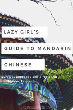 Lazy Girl's Guide to Mandarin Chinese - free, easy quick-start guide for total beginners and newbies. learn survival language skills for a short trip or quick visit to China or Taiwan! This vital vocab is enough for you to get by in Beijing, Shanghai, Nanjing, Taipei, Shenzhen, Chengdu, etc without spending money or too much time. Simple conversation, easy words, vocabulary blog blogger skills survive blog blogger vlog vlogger necessary vital imperative needed important phrases…