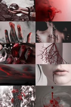 blood witch + divination aesthetic (requested) more here // request here Wow some dark stuff Witch Aesthetic, Aesthetic Collage, Red Aesthetic, Wiccan, Magick, Witchcraft, Pagan, Writing Inspiration, Character Inspiration