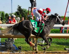 Eight Belles just past the finish line in the 2008 Kentucky Derby