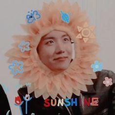 Foto Bts, Bts Group Photos, Jimin, Bts J Hope, Kpop, Bts Pictures, Jung Hoseok, Cute Cats, Taehyung