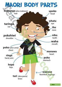 Body Parts in Maori Poster Body Parts in Maori Poster Teaching Resource School Resources, Teaching Resources, Maori Songs, Waitangi Day, Maori Symbols, Maori Patterns, Maori Designs, New Zealand Art, Maori Art