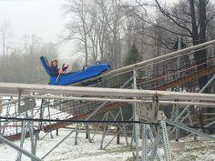 mountain coaster at camelback