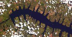 """Tirada do espaço, a foto mostra a região de Pereira Barreto (SP), com as diversas reentrâncias do rio Tietê. """"Desse ângulo, o rio parece um milípede [animais de corpo cilíndrico com centenas de patas]"""", diz o astronauta Chris Hadfield. O canadense está lançando um livro com imagens que tirou enquanto estava na Estação Espacial Internacional, chamado """"You Are Here - Around the World in 92 Minutes"""""""