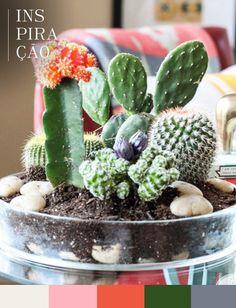 Inspiração pra quem quer um cantinho verde em casa, sem ter muito trabalho. Os cactus ficaram uma graça reunidos assim.