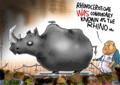 A record number of rhino have been killed this year, let's hope things start improving or else.