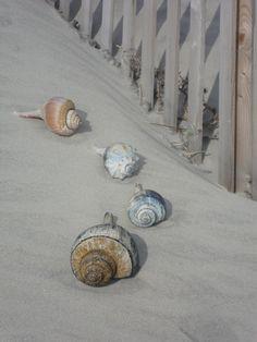 Good sand always a joy