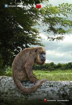 Other worlds studio Primates, Mammals, Prehistoric Wildlife, Prehistoric World, Extinct Animals, Brown Bear, Besties, Elephant, Terra