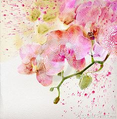 Floral background with watercolor orchid by Annaguz, via Dreamstime