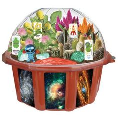 Space Terrarium - grow things in your own little bio-dome! Costs less than flowers and keeps on giving!