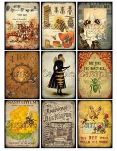 Baby Bumble Bee, Vintage Bee, Dollar Tree Decor, Scrapbook Paper Crafts, Scrapbooking, Bee Art, Bee Theme, Bee Happy, Bees Knees