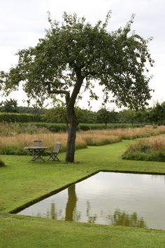 le jardin plume, auzouville sur ry, france - Another! Prairie Garden, Meadow Garden, Dream Garden, Garden Pool, Easy Garden, Water Garden, Natural Swimming Ponds, Natural Pond, Formal Gardens