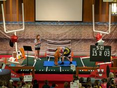 Image result for sports arena gate for vbs