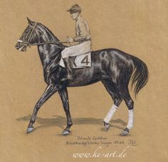 Black Gold xx - 1924 Kentucky Derby winner - drawing by Katja Eichhorn