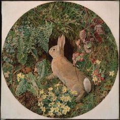 1855 William J. Webbe (English 1830-1904?) ~ Rabbit amid Ferns and Flowering Plants