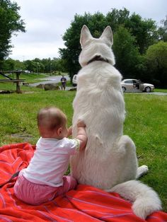 25 Heartwarming Pictures Proving That Every Single Person Needs a Dog in Their Life - Channels for DIY Animals For Kids, Cute Animals, Cat Brain, My Buddy, German Shepherd Dogs, German Shepherds, Cute Kids, Dogs And Puppies, Doggies