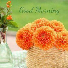 Good Morning greetings Good Morning Flowers, Good Morning Picture, Good Morning Good Night, Morning Pictures, Good Morning Images, Good Morning Quotes, Good Morning Thursday, G Morning, Morning Wish
